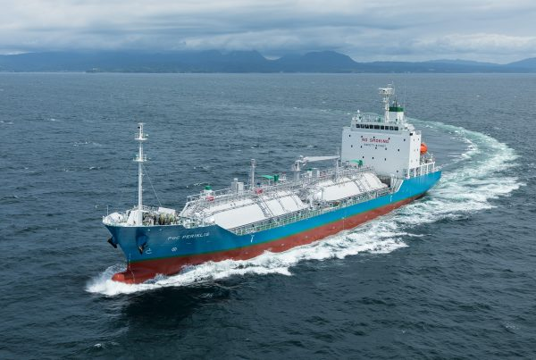 Paradise Navigation – Ship-management Company